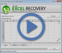 You can perform recovery of XLSX files with XLSX recovery tool. With XLSX file recovery software you will be able to repair corrupted .xlsx sheets in very less amount of time and without any alteration.