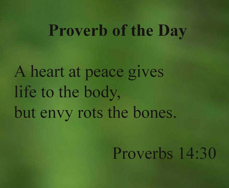 1000+ images about Sins on Pinterest  Book of proverbs, Bible quotes and Ins...