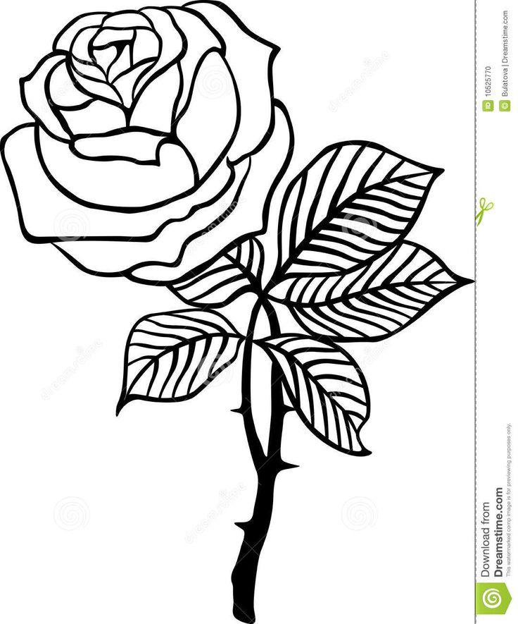 Vector Color De Rosa Del Negro - Descarga De Over 38 Millones de fotos de alta calidad e imágenes Vectores% ee%. Inscríbete GRATIS hoy. Imagen: 10525770