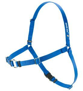 Softouch SENSE ible No Pull Dog Harness Blue Medium Large Available in a variety of sizes.. Prevents coughing choking and gagging.. Leash attaches at chest to reduce pulling.. Great training tool for walking your dog.. Allows for a full range of motion..  #SENSE-ation #Pet_Products