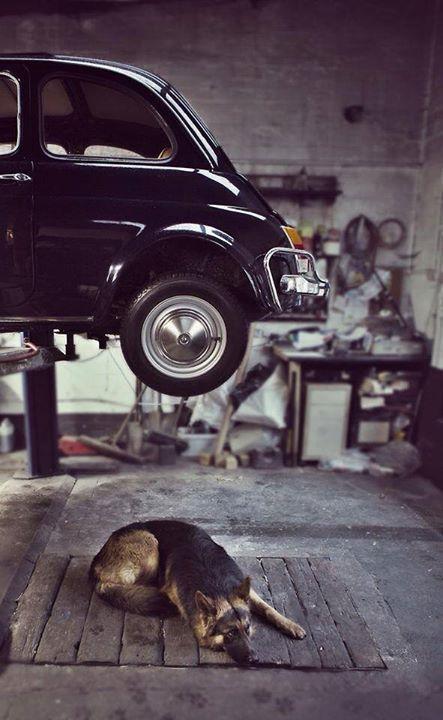 Marchetti & Hitch. ph: Burdett …. e c'è sempre una Fiat 500 http://ift.tt/1lxIEna Arte.it http://ift.tt/1z7u9h4
