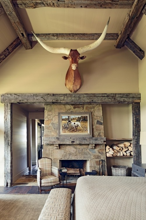 Eventually, some kind of animal with antlers will be above my fireplace.