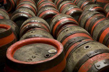 The Best Brugal Rum Center Tours, Trips & Tickets - Puerto Plata | Viator