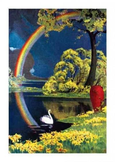 Swan and Rainbow Sympathy Greeting Cards
