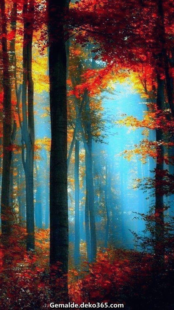 Außergewöhnlich #forrest #fog #redleaves #bluelight