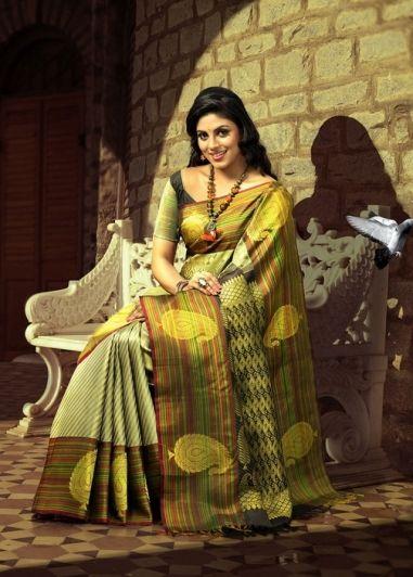 http://www.shreedevitextile.com/women/sarees/silk-saree/shree-devi/grey-with-fawn-colored-pure-kanchipuram-silk