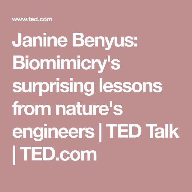 Janine Benyus: Biomimicry's surprising lessons from nature's engineers | TED Talk | TED.com