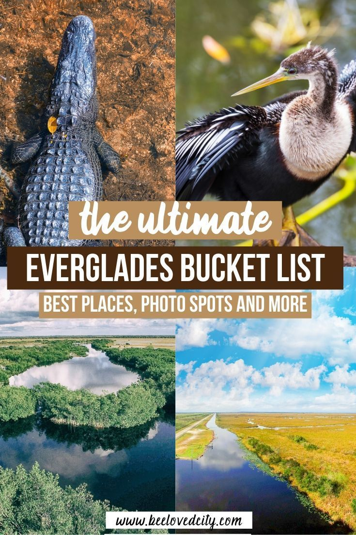Things To Do In The Everglades National Park Travel Guide Beeloved City National Parks Trip Florida Travel Guide North American Travel