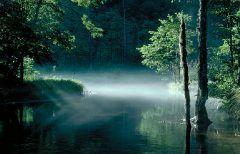 長野県松本市の山岳地帯上高地に日本にいることを忘れるくらいの神秘的な池があります その池が田代池 水深は非常に浅く底の土が見えるほどその水は澄み切っていて水面にはイワナが見えることもあるんですよ 四季折々に姿を変えていつ行っても素敵な場所です(ˊᗜˋ)و tags[長野県]
