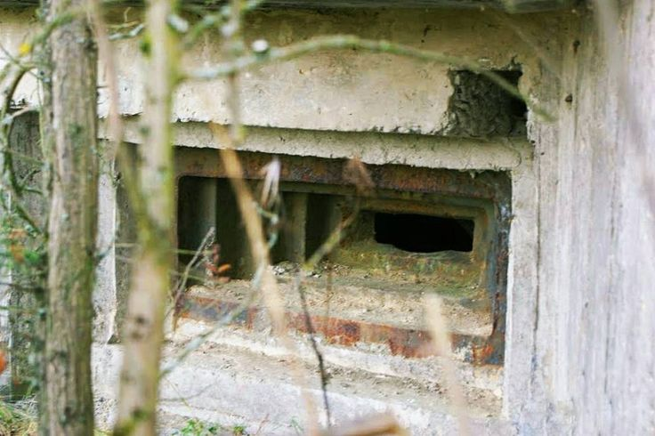 #bunkiernasobotę #neirawypełzaznory  ℹ http://bit.ly/2anUi7M  #LiniaMołotowa #bunkier #bunkry #fortyfikacje #umocnienia #beton #eksploracja #opuszczone #zapomniane #historia #bunker #pillbox #bunkers #fortification #warhistory #history #fortifications #concrete #abandoned #forgotten #exploration #explorer #abandonedplaces