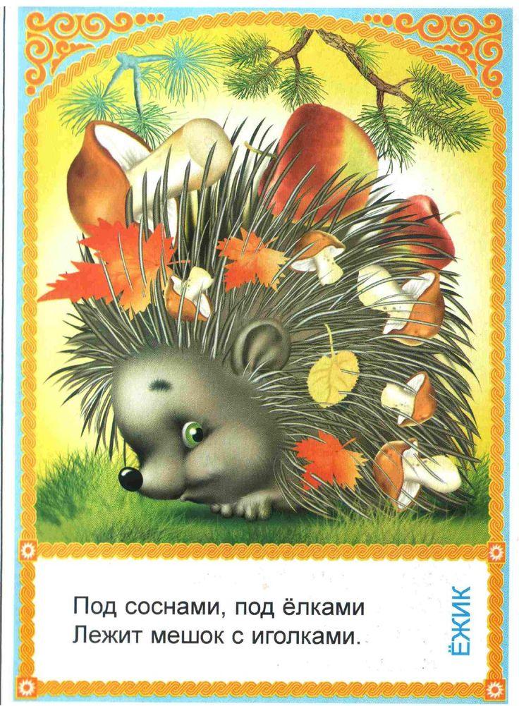 Загадка открытка, февраля для