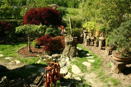 Tropic Hukvaldy - exotické rostliny a zvířata - Zoo
