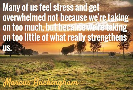 Many of us feel stress and get overwhelmed not because we're taking on too much but because we're taking on too little of what really strengthens us.  ~Marcus Buckingham~