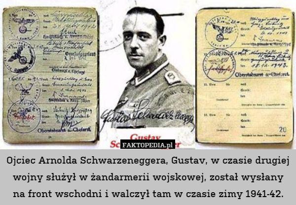 Ojciec Arnolda Schwarzeneggera, Gustav, w czasie drugiej wojny służył w – Ojciec Arnolda Schwarzeneggera, Gustav, w czasie drugiej wojny służył w żandarmerii wojskowej, został wysłany na front wschodni i walczył tam w czasie zimy 1941-42.