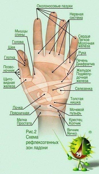 здоровье на руках