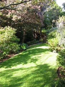 Te Kainga Marire Garden