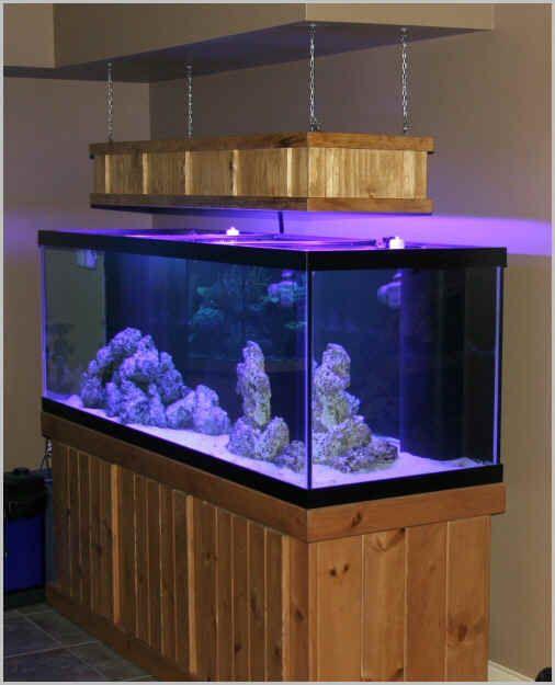 [Tank Diaries] Giancarlo's 180 Gallon Reef Build | Home Aquaria