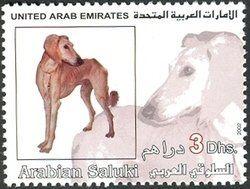 Stamp: Saluki (Canis lupus familiaris) (United Arab Emirates) (Fauna) Mi:AE 678,WAD:AE007.02