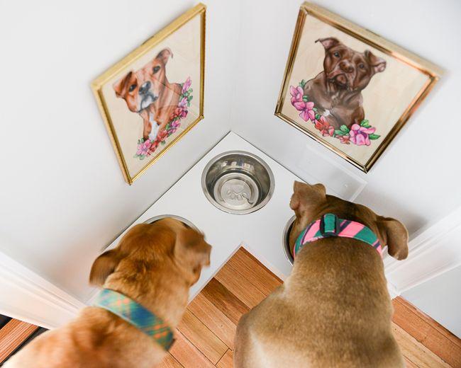 DIY Corner Pet Food Station
