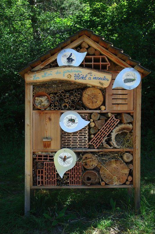 Comment construire un abri à insectes (vos futurs auxiliaires de jardin) ?