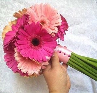 or like this. but i think i want to do their bouquets in white daisies with pink ribbon wrapped around the stems...but all the way down. and its a fuschia pink...fake flowers of course...any thoughts? of which would look better, pink or white? their dresses are blue. @Angela Taylor