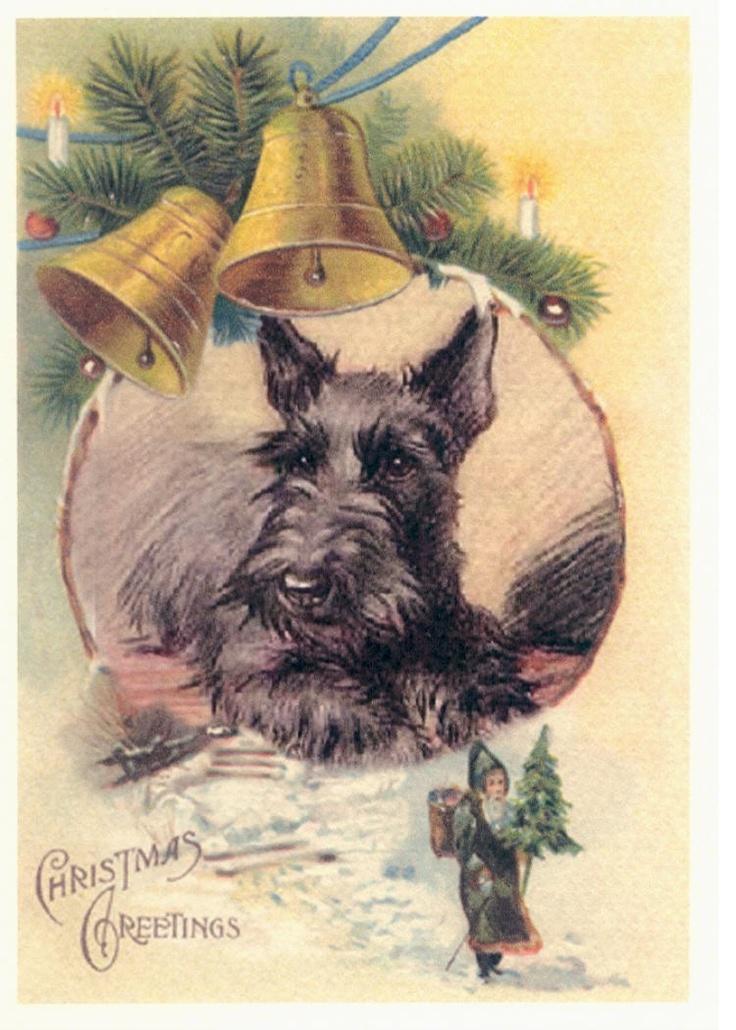 Scottie Dog Christmas Bells Card s Scotty Scottish Terrier Christmas Cards Scotty Holiday. $17.20, via Etsy.