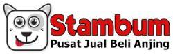 Stambum.com Pusat Jual Beli Anjing