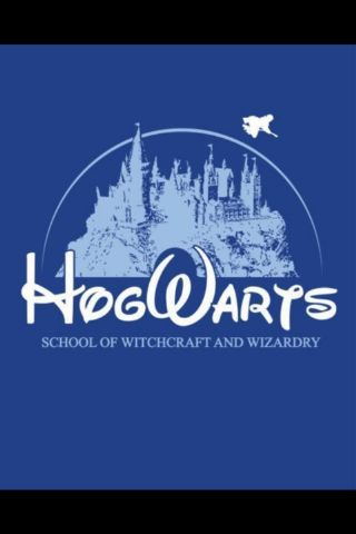 My little brothers are totally convinced that this is were I go to school. Hogwarts represent!!!