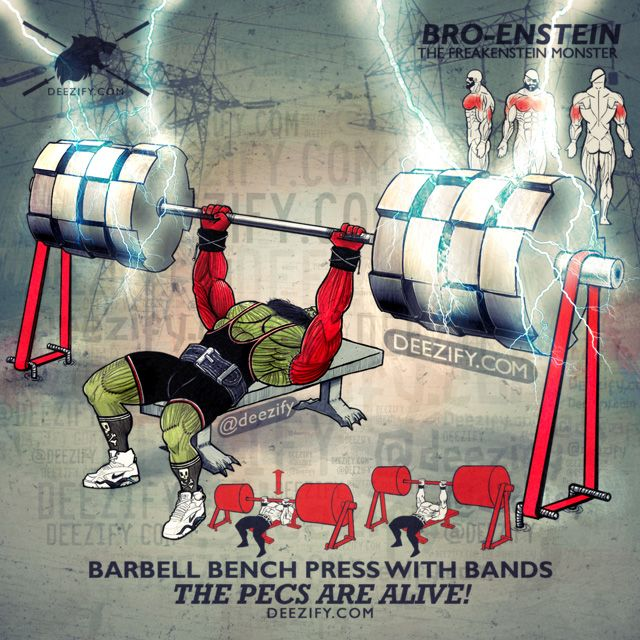 Epic Workout Monster Highlights: 25+ Best Ideas About Bench Press On Pinterest