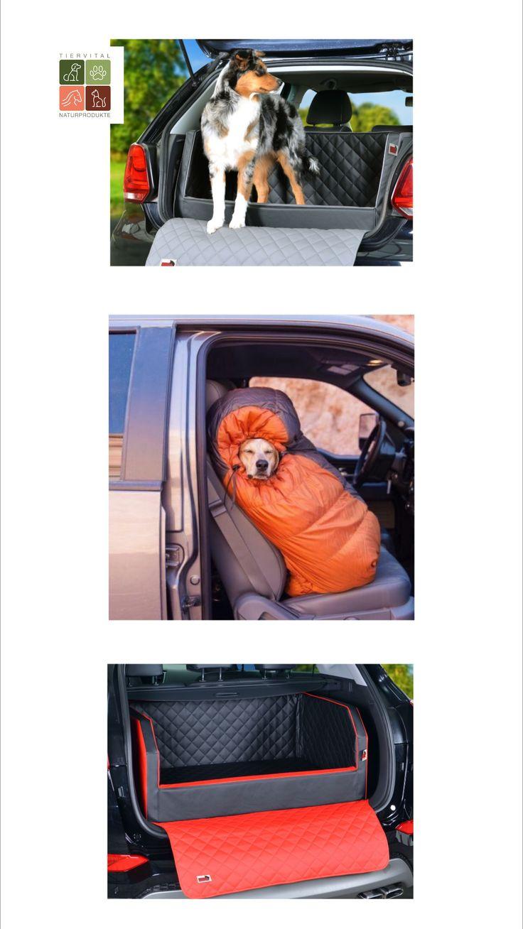 Hunde Transportbox & Transporttasche das mobile Zuhause für den ...