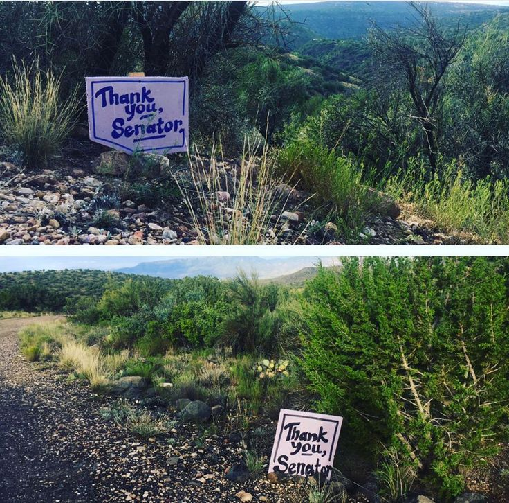 People across the country are hailing Sen. John McCain a hero for voting against a bill that aimed to repeal part of the Affordable Care Act. The senator's wife Cindy took to Instagram Saturday to post photos of 'thank you' signs left by supporters along an Arizona road the McCain family frequents, the Dayton Daily News reported.