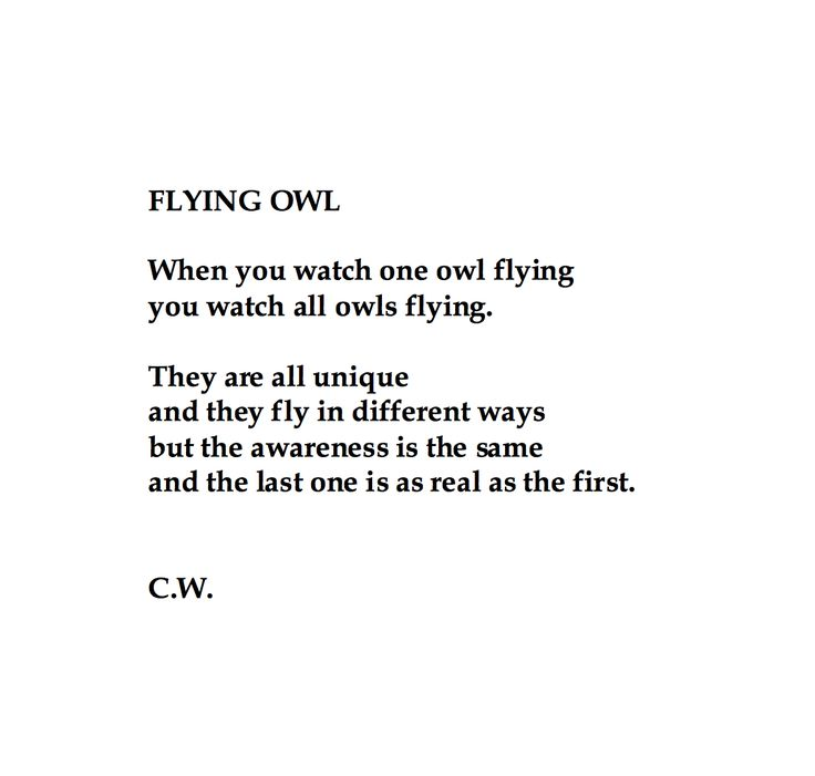 "This poem is a reaction to Hemingway's quote: ""When you have shot one bird flying you have shot all birds flying. They are all different and they fly in different ways but the sensation is the same and the last one is as good as the first."""