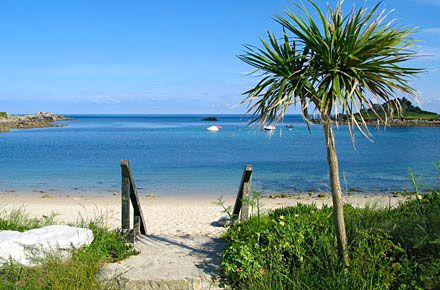 Isles of Scilly, Cornwall - my Cornish boyfriend insists he'll bring me one day! We'll see