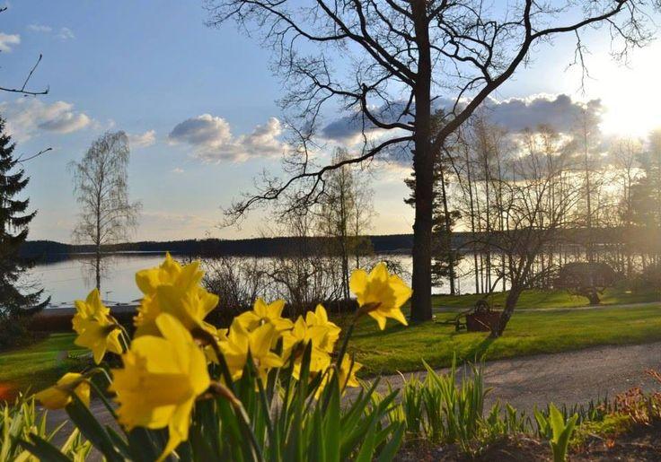 Орилампи - финский рай