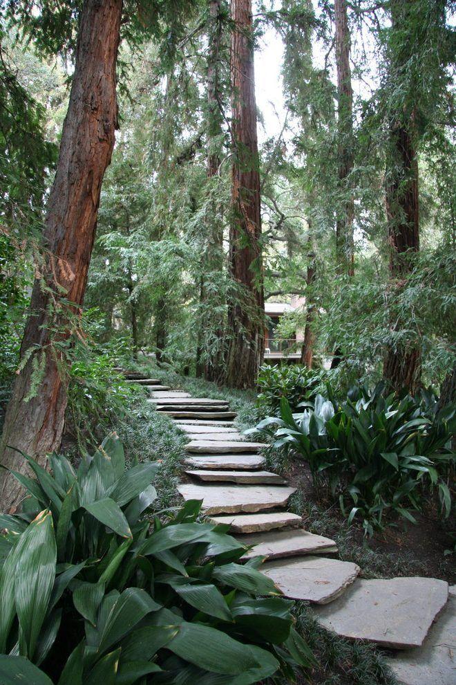 Stone Slab Path Forest Garden Traditional Landscape Garden Stepping Stones
