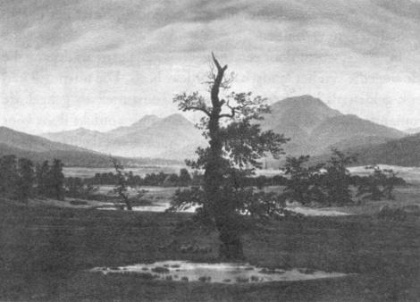 Friedrich - Eenzame boom, http://www.dbnl.org/tekst/lema010filo01_01/lema010filo01ill03.gif