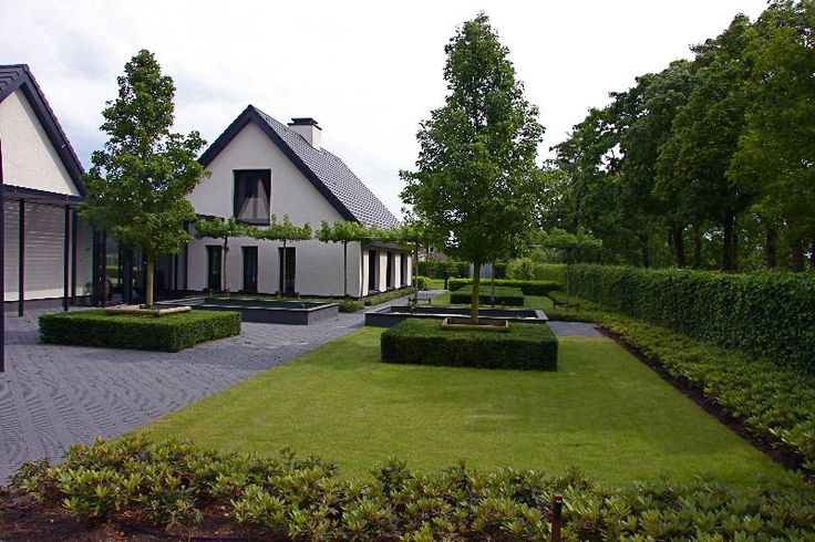 Moderne-strakke tuin- modern clean garden