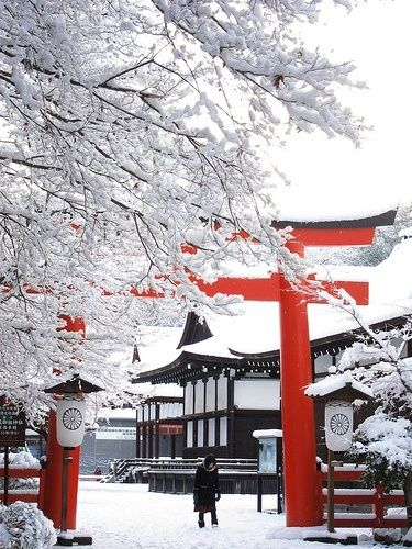 Snow In Kyoto, Japan
