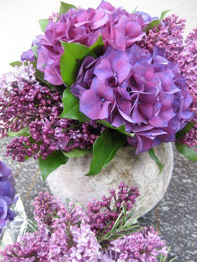 Purple flower arrangement - hydrangea, lilacs - Judith Blacklock