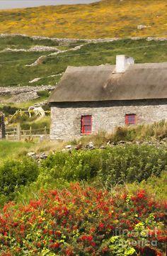 Hillside Cottage.