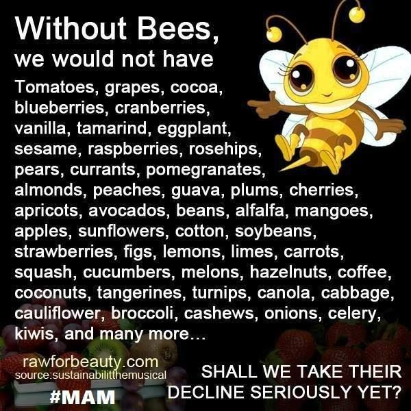 And the list goes on and on.... ‪#‎SavetheBees‬ ‪#‎MAM‬ ‪#‎NoGMOs‬ Via: March Against Monsanto