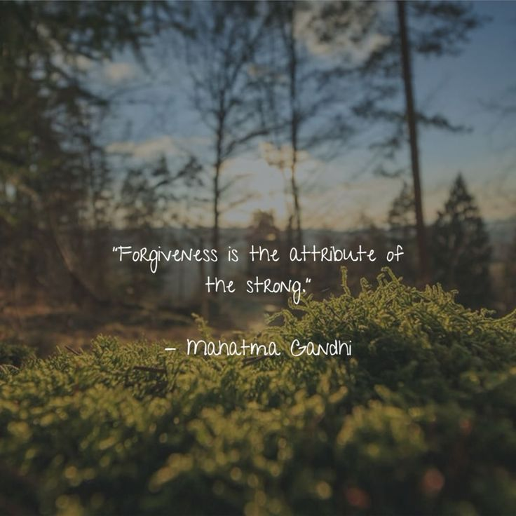 Forgiveness if the attribute of the strong.    #forgiveness #strength #online