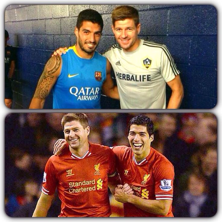 Two great Red mates