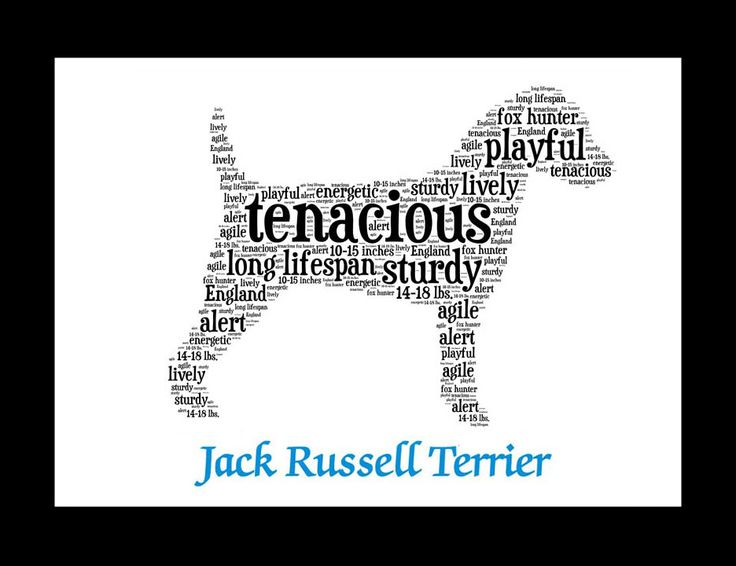 Traits of the Jack Russell Terrier If you are a pet parent or are shopping for a dog lover, our pet portrait wall art makes an ideal addition to a dog lover's home's décor. This listing is for a Jack
