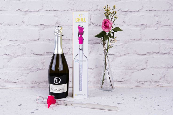 A Prosecco and bottle chiller... Prosecco and this unique kitchen gadget that will keep any bottle of white wine or bubbles chilled – perfect dinner party or summer party gift.