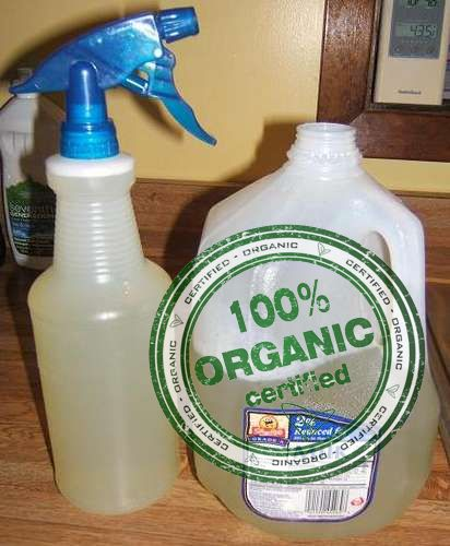 9 best images about organic pesticides on pinterest homemade the soap and organic pesticides - Homemade organic pesticides ...