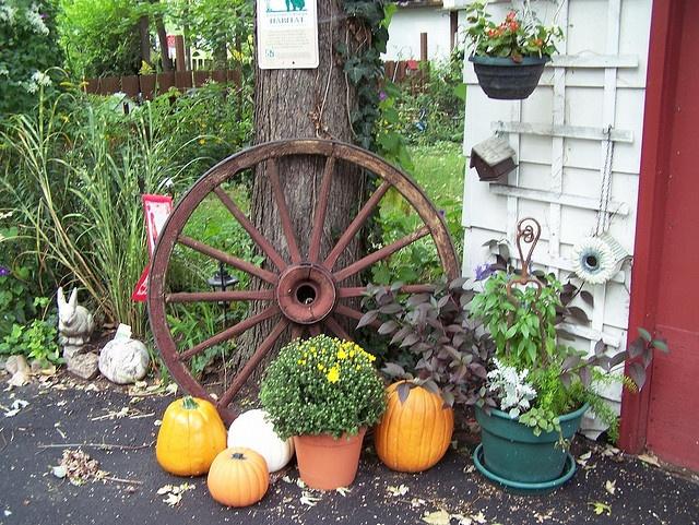 Vintage Wagon Wheel Fall | Wagon wheels, Wheels and Gardens