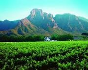 Franschhoek - Cape Town