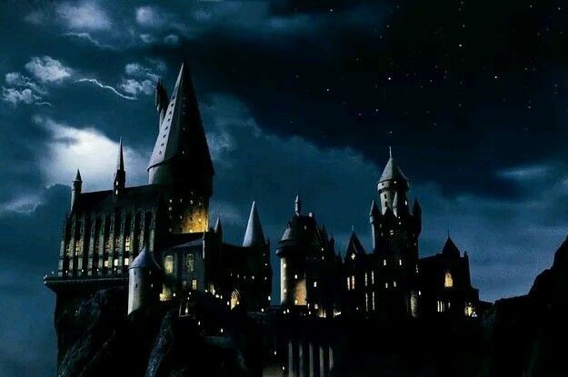 Do you think i should have a hogwarts rp? Vote yes or no in the comment section.