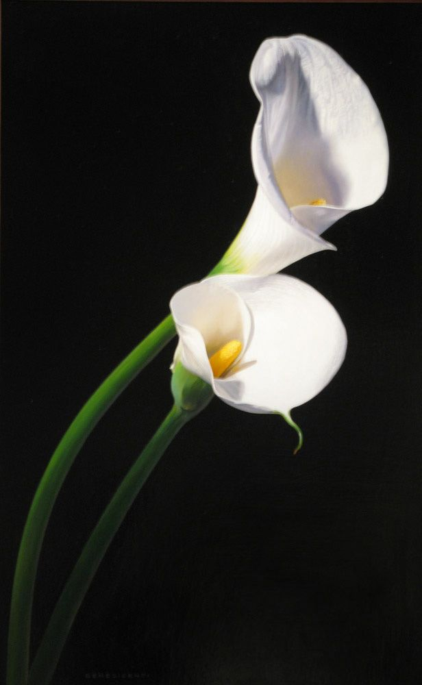 """""""Two Callas"""" - Luigi Benedicenti"""